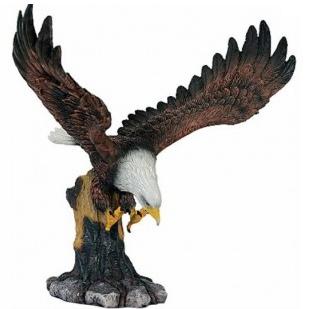 Aigle atterrissage